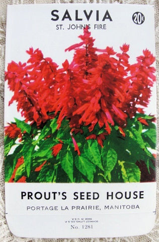 VINTAGE Seed Packet Colorful Flowers Suitable To Frame Cottage Chic Decor Scrapbooking Crafts Weddings Garden Gifts