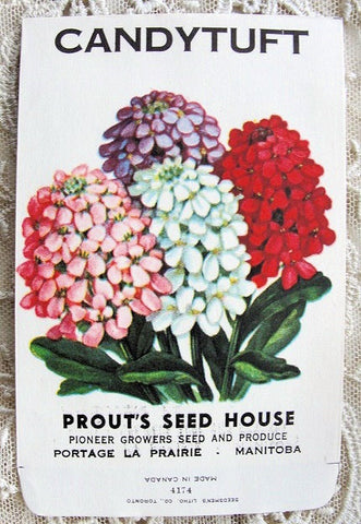 Antique Floral SEED PACKET Colorful Flowers Suitable To Frame Cottage Chic Decor Scrapbooking Crafts Weddings Garden Gifts