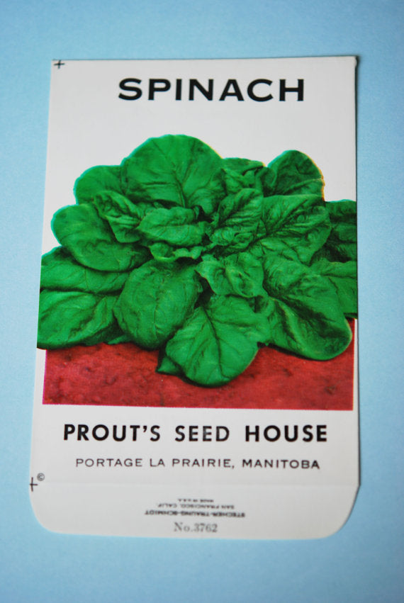 Vintage 1950s Colourful Spinach Seed Packet