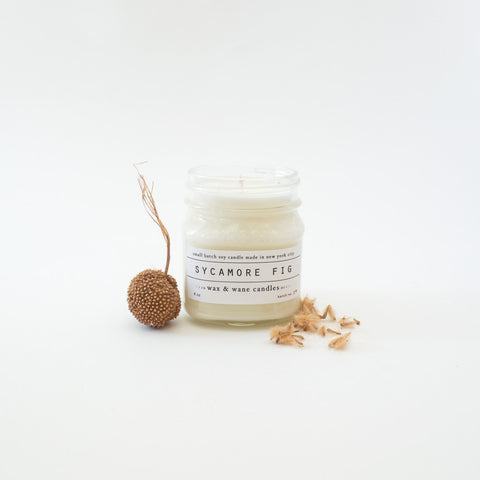 Sycamore Fig Candle