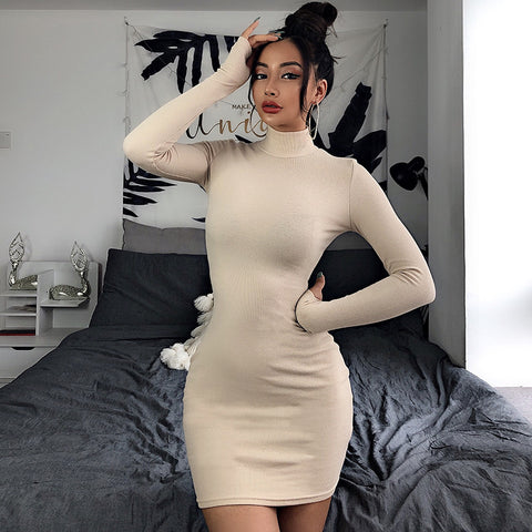 Solid Color Long Sleeve High Collar Dress