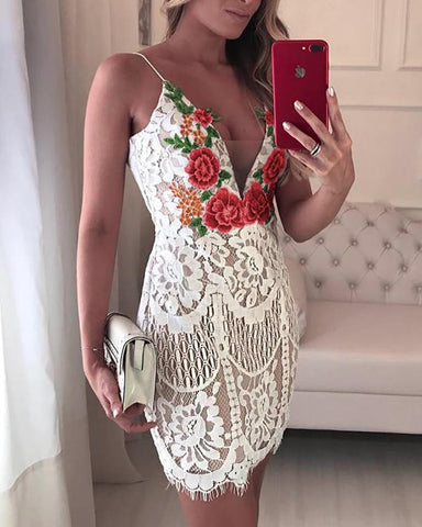 Embroidered Lace V-neck Dress