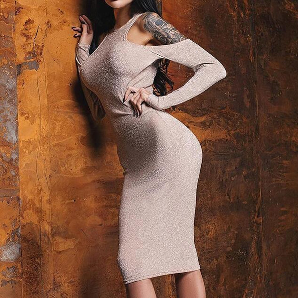 Fashion Womens Long Sleeve Dress