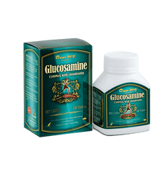 Top Life Glucosamine 1500 Max with Chondroitin - 100 Capsules