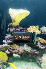 Flipper NANO FLOAT 2 in 1 Magnetic Aquarium Algae Cleaner