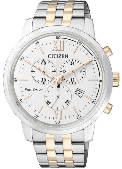 Citizen Eco-Drive Chronograph AT2304-50A Watch (New with Tags)