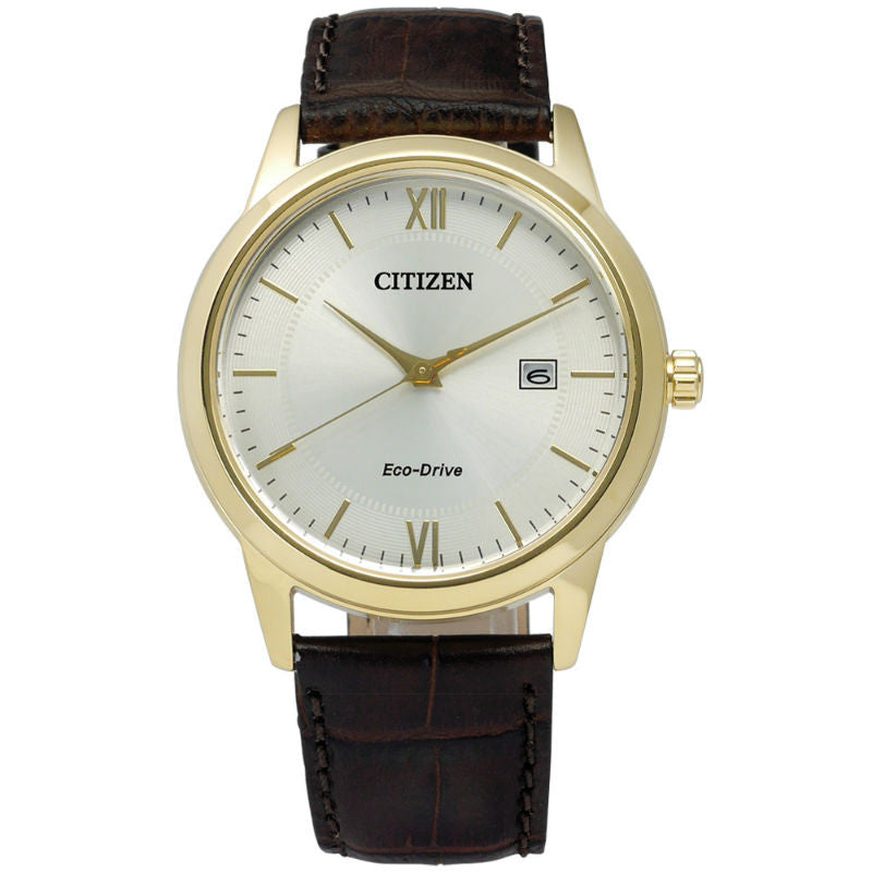 Citizen Eco-Drive AW1232-12A Watch (New with Tags)