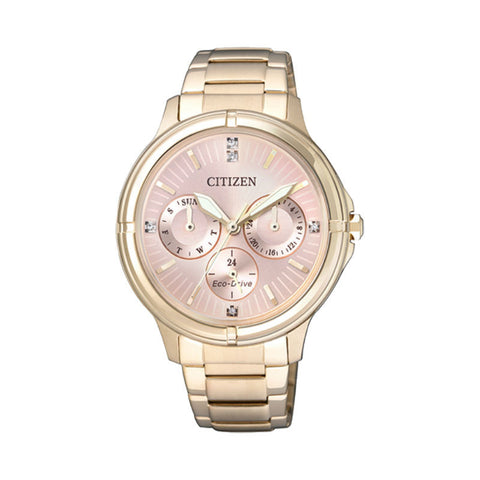 Citizen Eco-Drive FD2033-52W Watch (New with Tags)