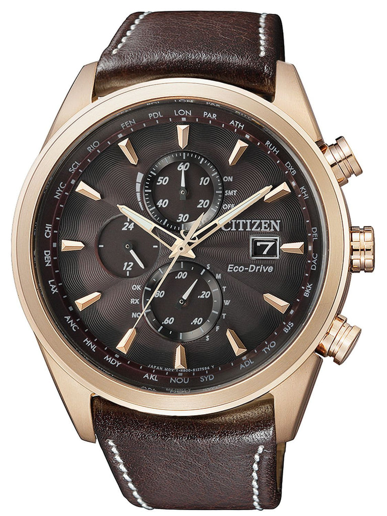Citizen Eco-Drive Leonardo AT8019-02W Watch (New with Tags)