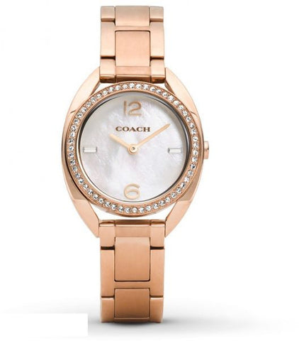Coach Sam 14502028 Watch (New with Tags)