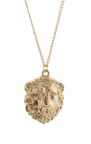 Lion Head Necklace, was £15