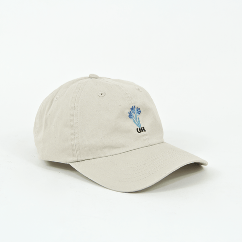 Skateboard Cafe - Blues 6 Panel Cap - Cream