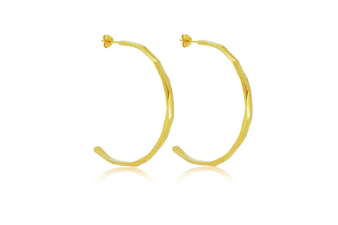 Faceted Hoop Earring