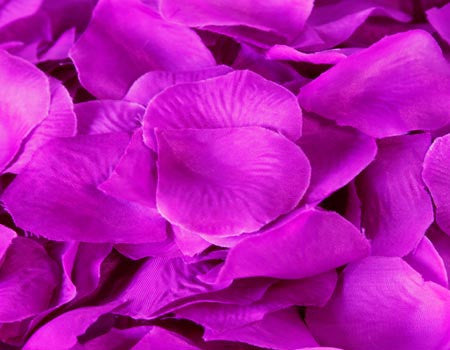 Silk Flower Petal Purple ( 400 Petals ) -