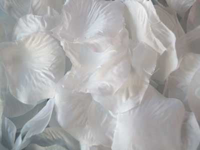 Silk Flower Petal White ( 400 Petals ) -