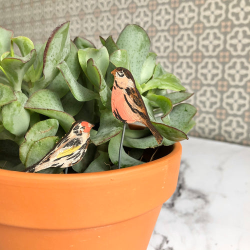 Wooden Birds for Plant Pots