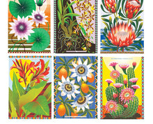 Flowers of the World Postcard Pack
