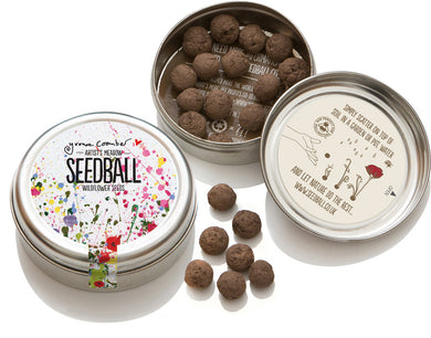 Artist's Meadow Seed Ball Tin