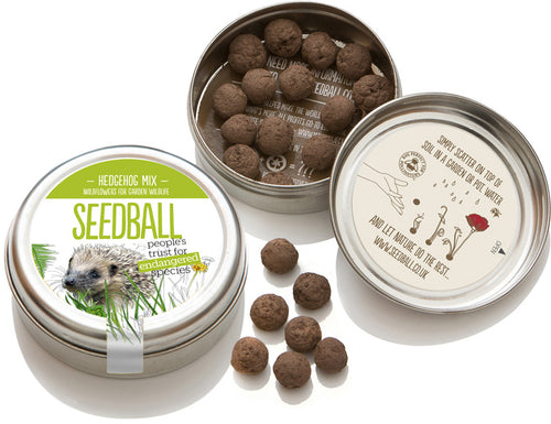 Hedgehog Mix Seed Ball Tin