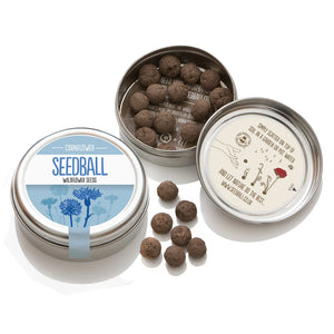 Cornflower Seed Ball Tin