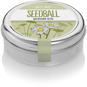 Oxeye Daisy Seed Ball Tin