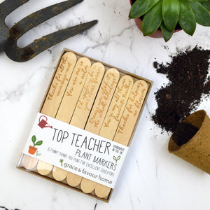 Best Teacher Plant Marker Gift Set