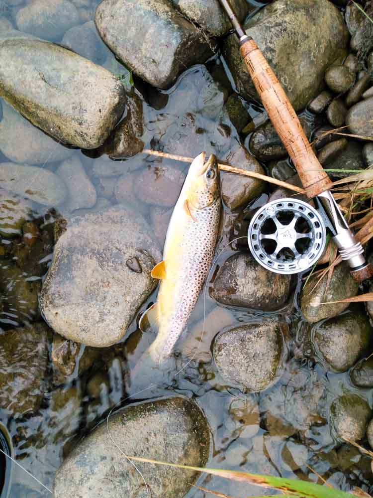 The JL Dry Fly micro thin fly line