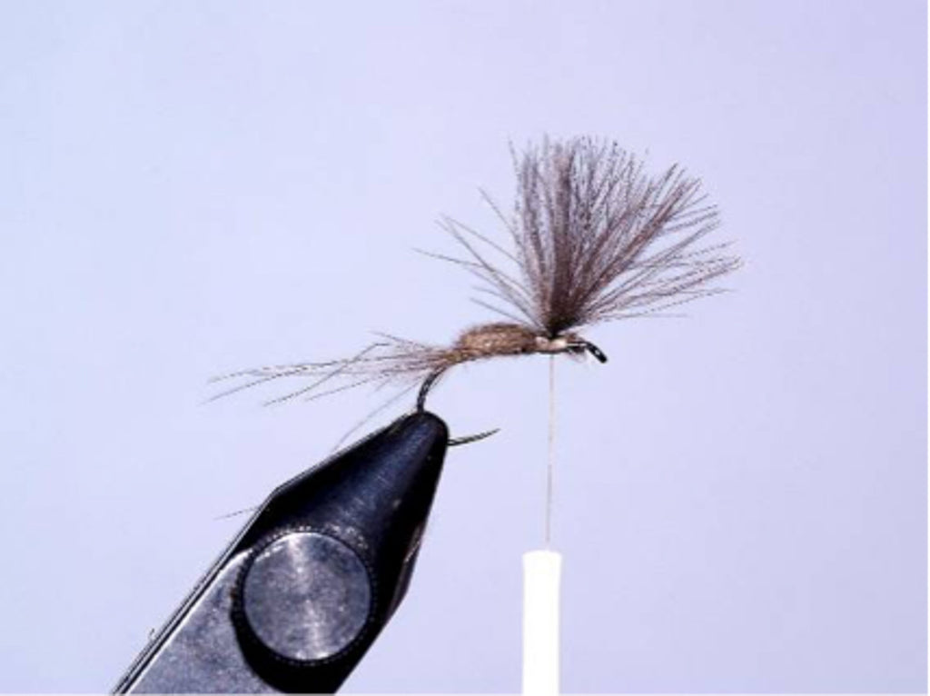 Cdc dry fly by David Southall | Sunray micro thin fly lines.