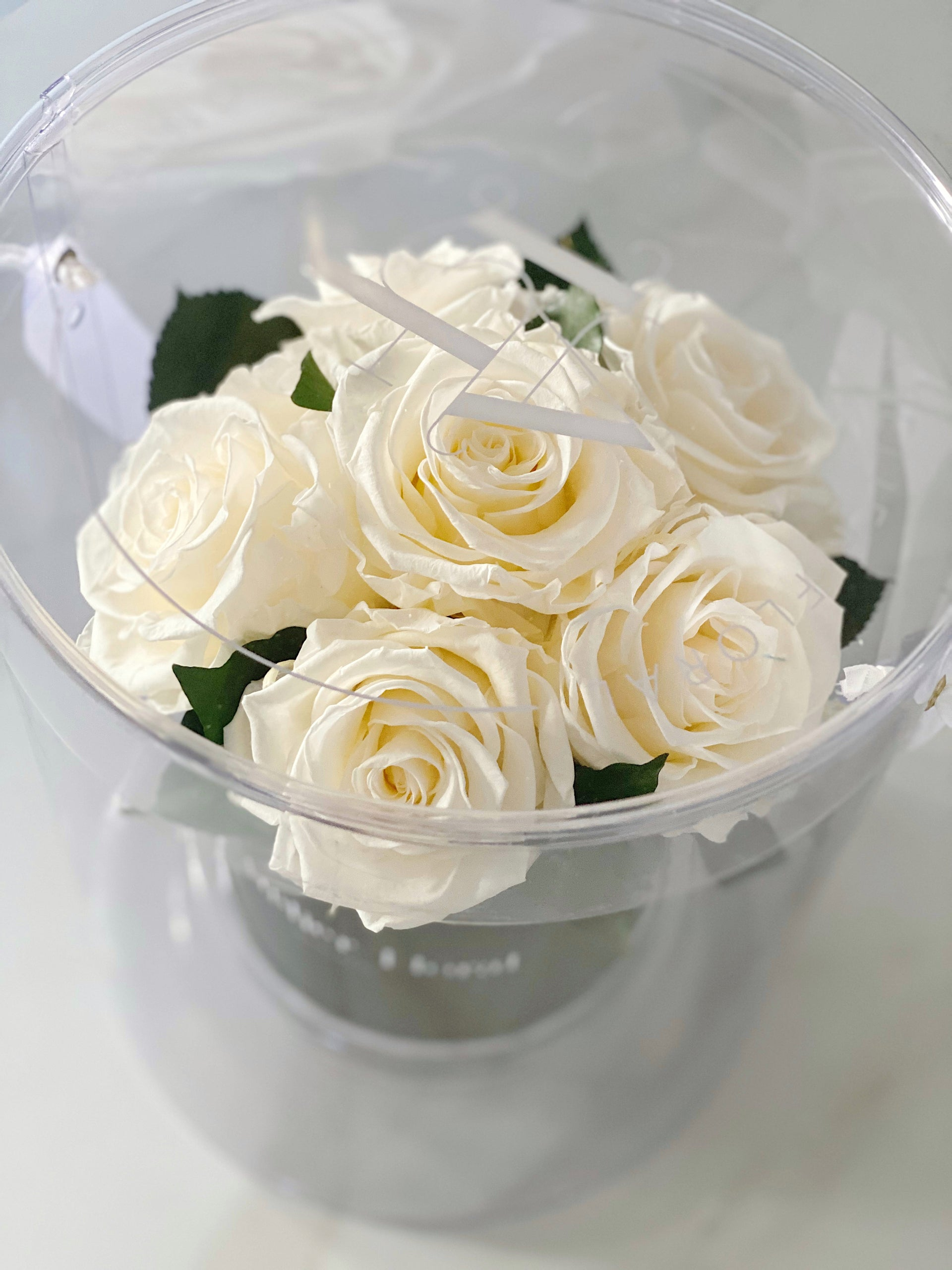 Mini Bouquet of Eternal Roses in Cream (Black Box)
