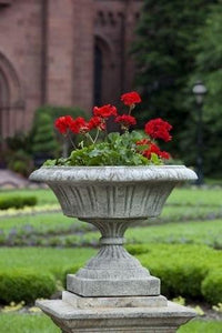 Campania International Smithsonian Georgetown Urn The Garden Gates