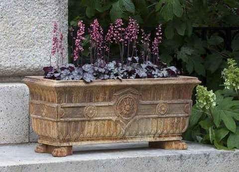 Campania International Smithsonian Eastlake Fern Box Life on Plum