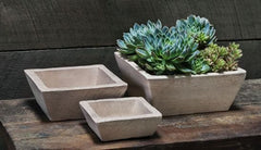 Campania International Earth Square Planter Set of Three in Sand-Life on Plum by Campania International