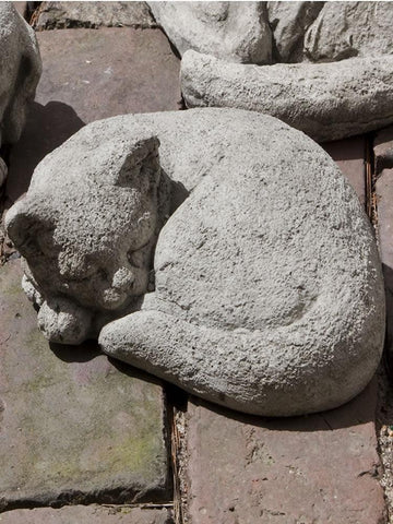 Campania International Curled Small Cat Statue The Garden Gates