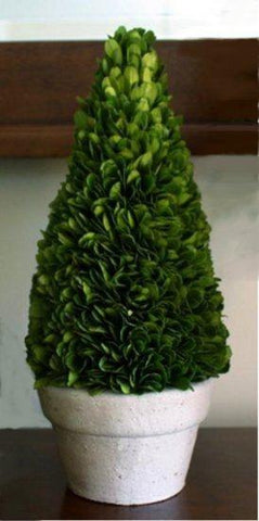 Image of Mills Floral Preserved Boxwood 11-inch Cone Topiary Life on Plum