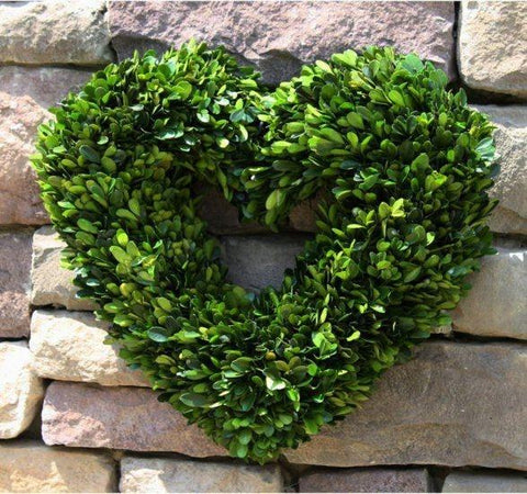 Mills Floral Preserved Boxwood 16-inch Heart Wreath Life on Plum