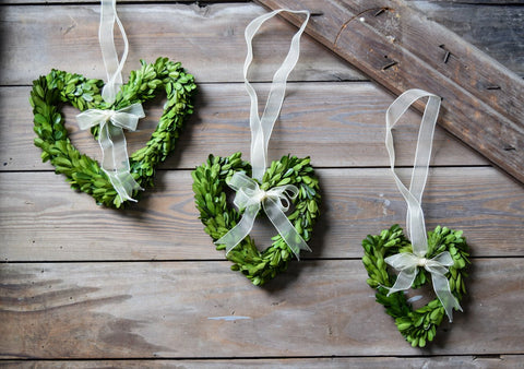 Image of Mills Floral Preserved Boxwood Heart Wreath Set with Ribbon
