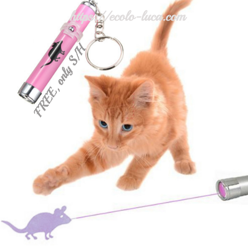 FREE: Cat Toys LED Light Pointer - Ecolo.luca