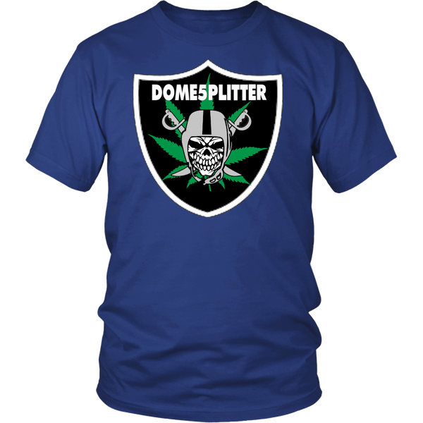 Domesplitter Raider's