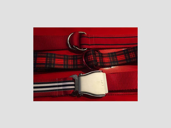 Provincetown Holiday Belt from Coffey Men