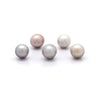 Lot of 5 Small 7mm Cortez Pearls from 2020 HARVEST