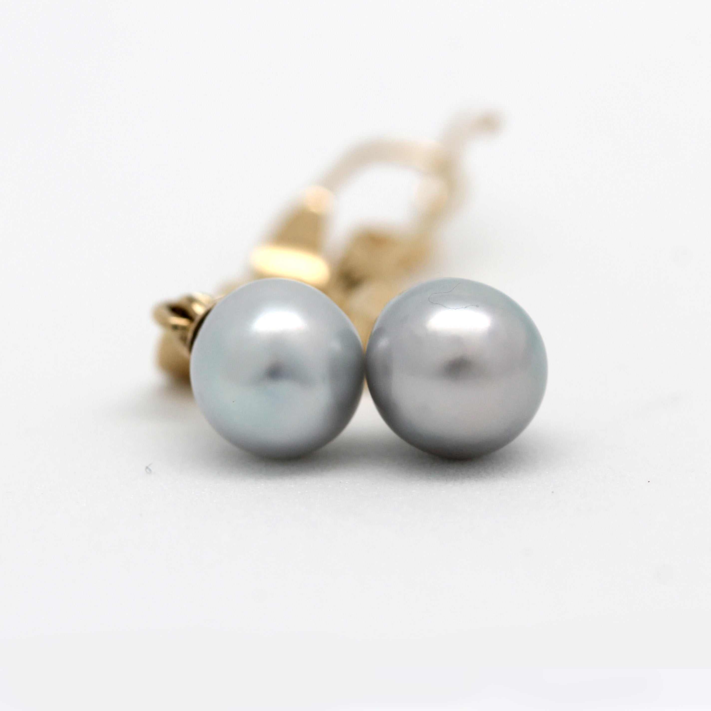 14K Yellow Gold Hanging Earrings with Sea of Cortez Pearls