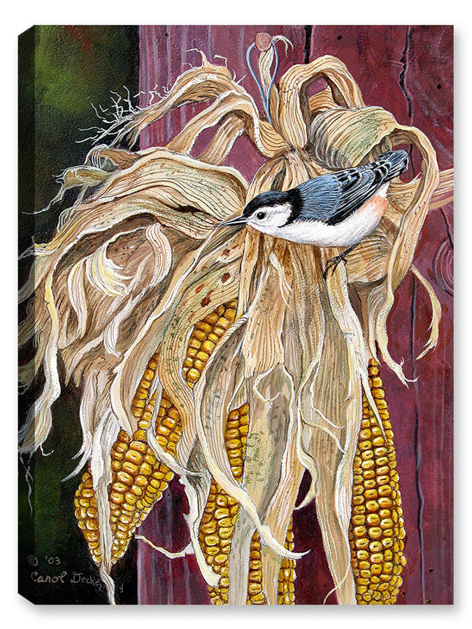 Autumn Nuthatch on Corn - Canvas Art Plus