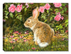 Bed of Roses & Rabbit by Carol Decker - Canvas Art Plus