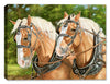 Buck and Babe - Horses by Carol Decker - Canvas Art Plus