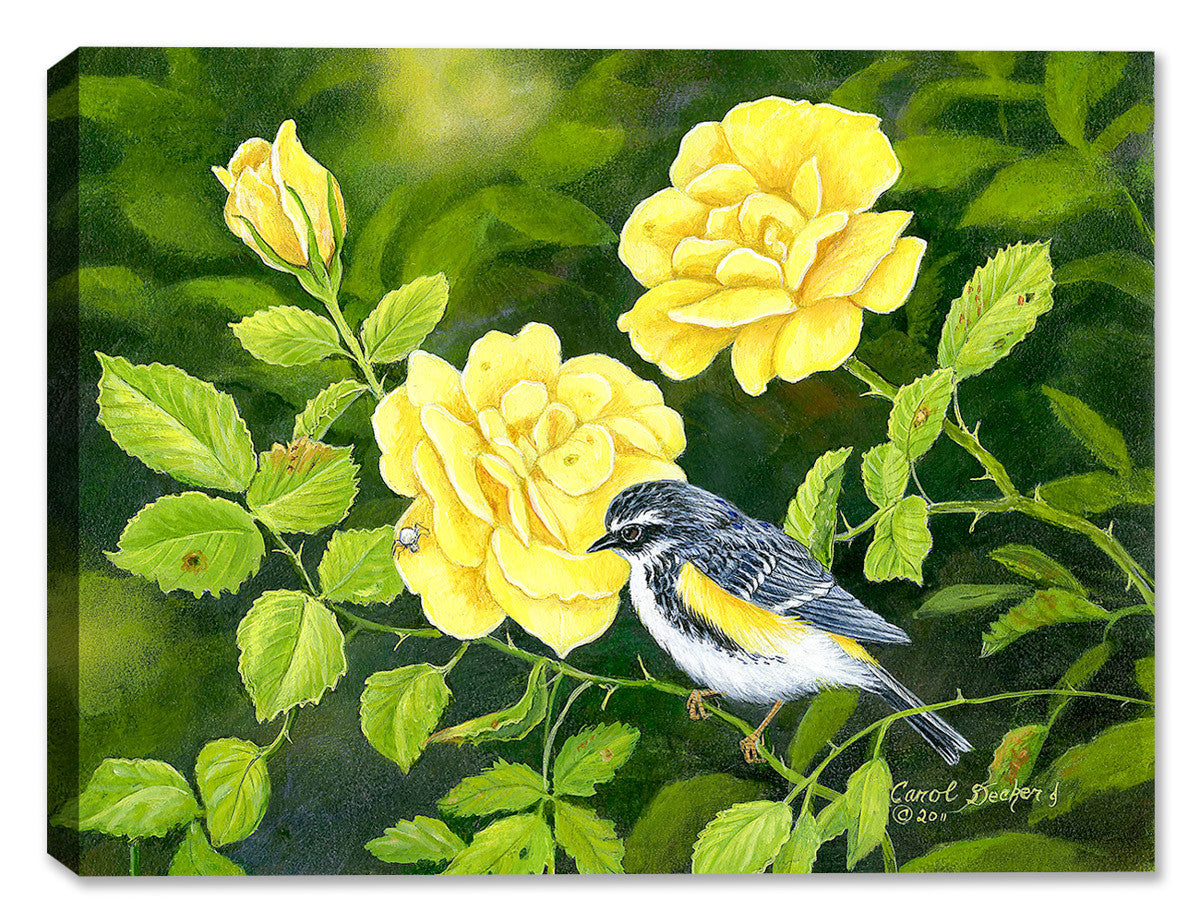 Buttercream Bird and Roses by Carol Decker - Canvas Art Plus