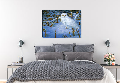 Snowing Owl - Chillin' - Canvas Art