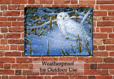 Owl Painting Hangin on Patio Wall
