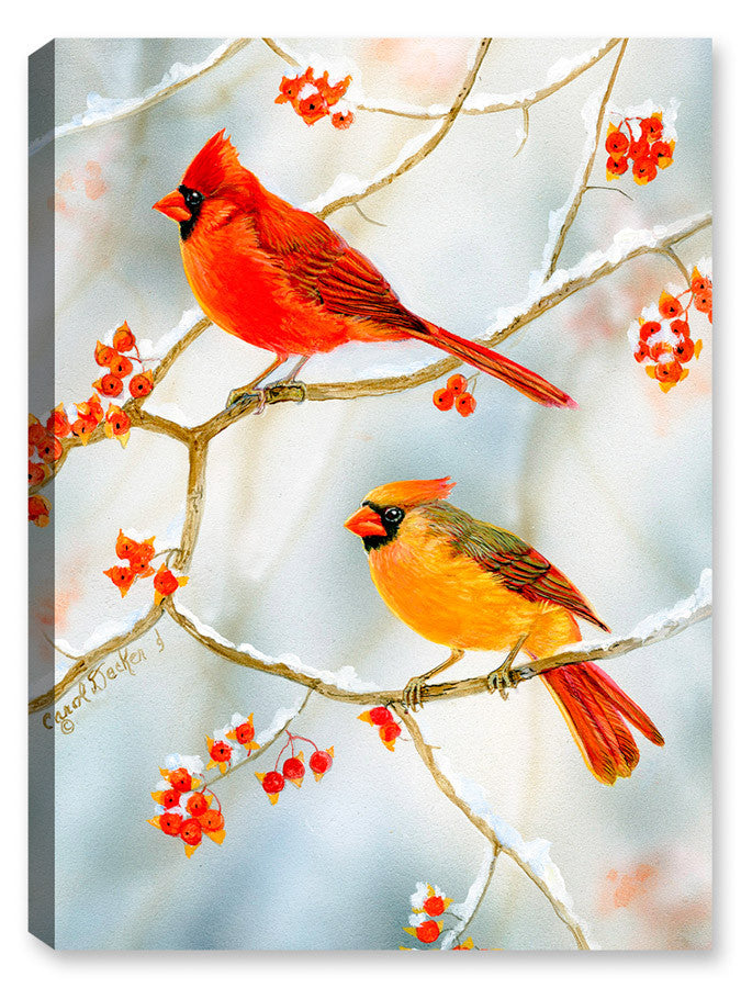 Cardinals Bird in the Bittersweet - Canvas Art Plus