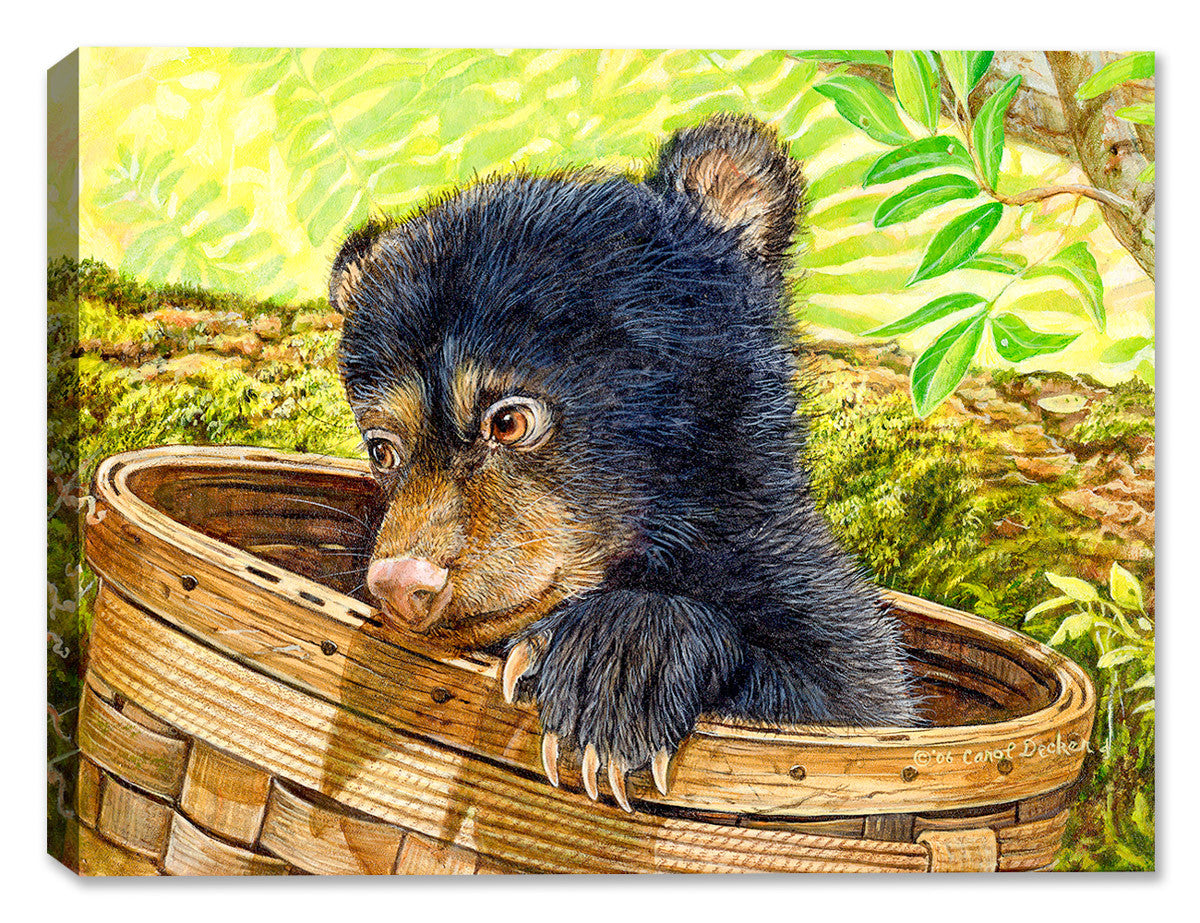 Caught in the Art - Cub Bear - Canvas Art Plus