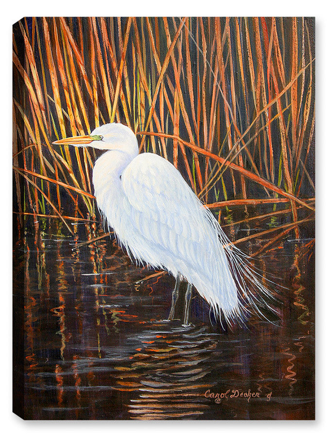 Standing White Egret on Pond - Canvas Art Plus